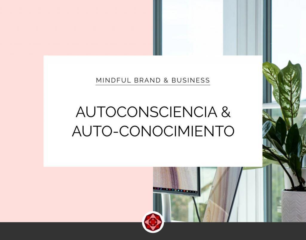 La autoconsciencia y el Auto-conocimiento en el emprendimiento | Red Ruby Sphere