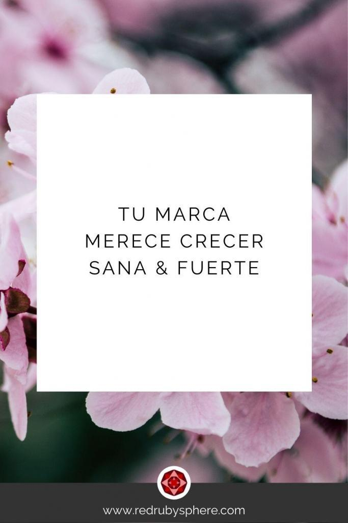 Tu Marca merece crecer Sana y Fuerte   Red Ruby Sphere by Alma Seidel