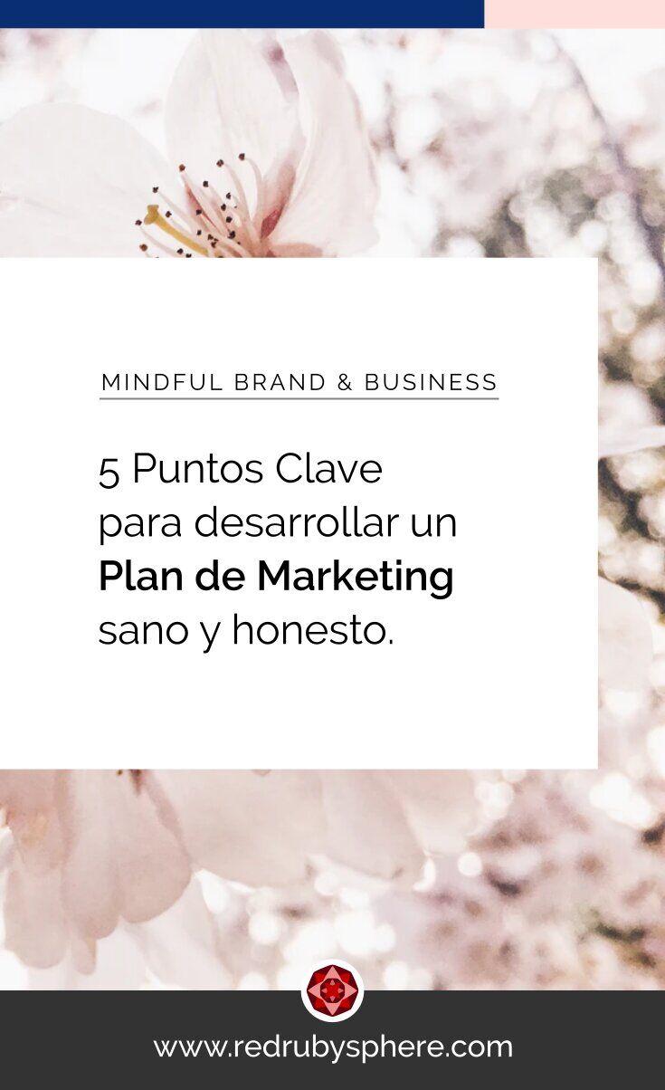 5 Puntos Clave para desarrollar un Marketing Plan sano y honesto para tu negocio